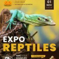 L'EXPO Reptiles revient à Sanary!